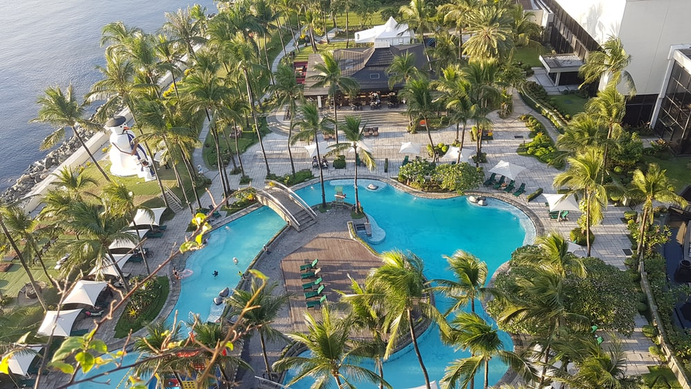aerial photo of palm trees around outdoor pool in beach