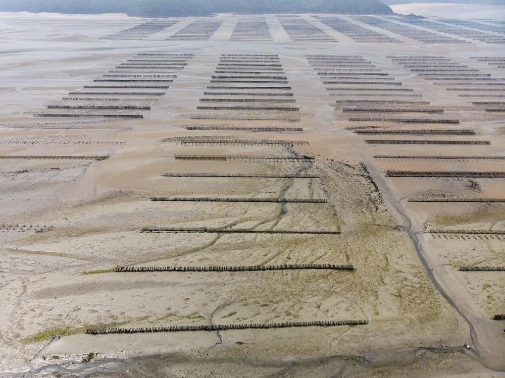 grey mud field