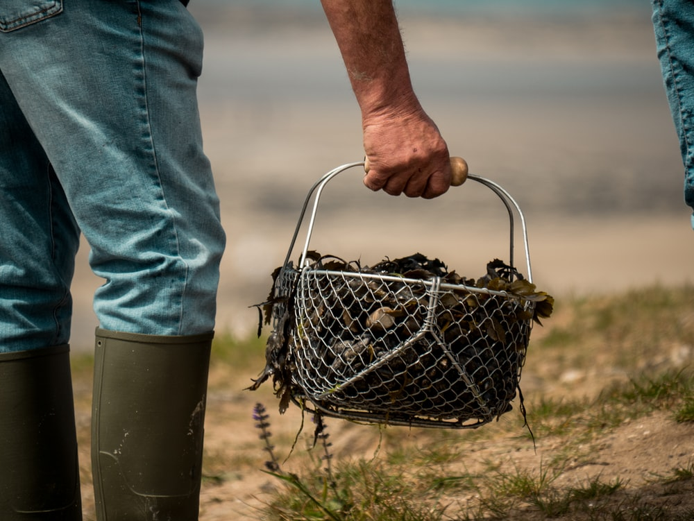 person carrying basket