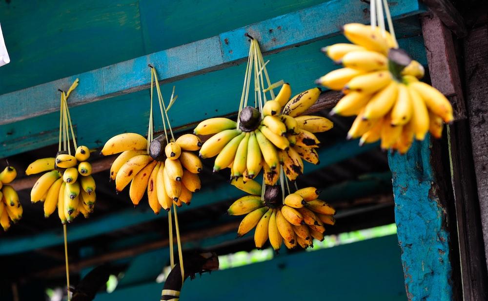 hanged bunch of bananas