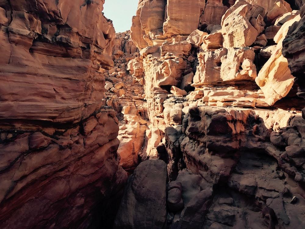 landscape photo of grand canyon