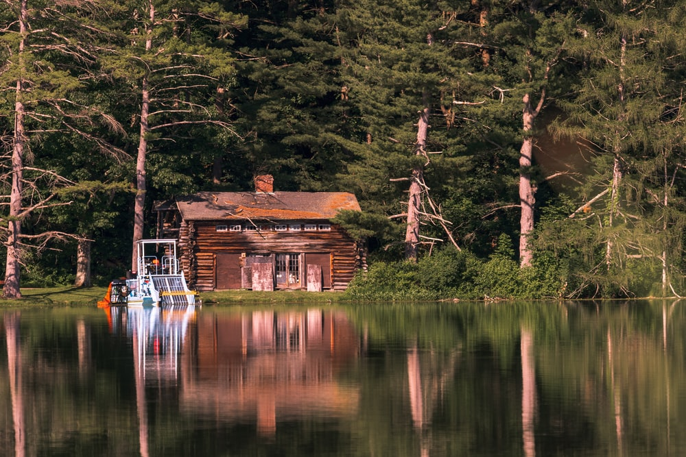 cabin in front of trees near the lake during day