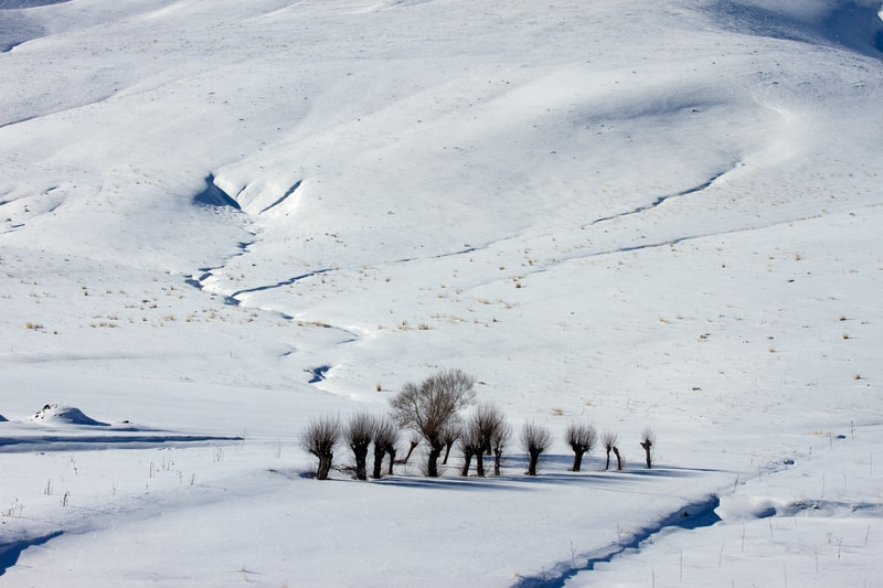 Ouloup