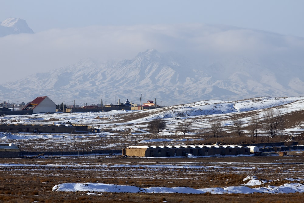 landscape photo of brown fields