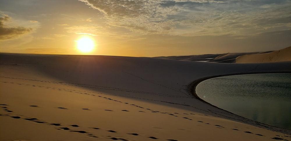 silhouette photo of desert
