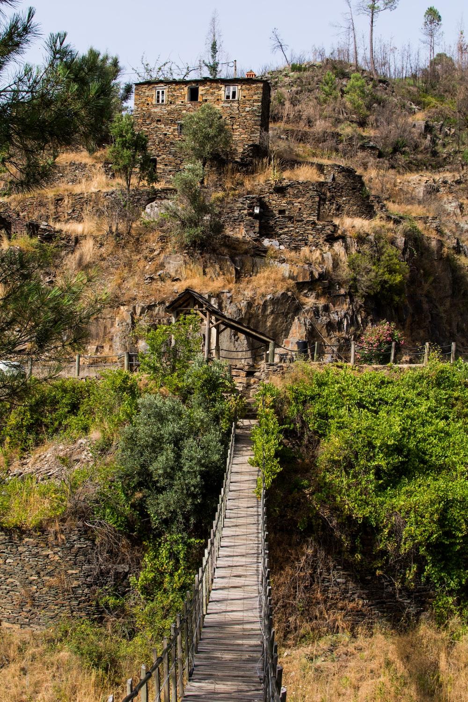 brown wooden hanging bridge