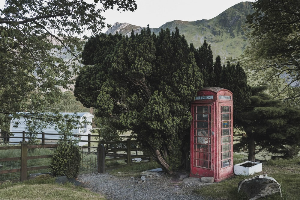 red wooden telephone beside green tree