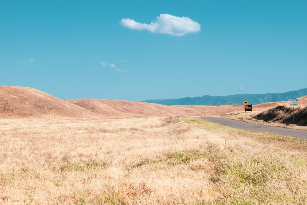 brown grass field with hill and road
