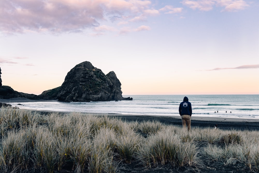 Piha Beach New Zealand Pictures