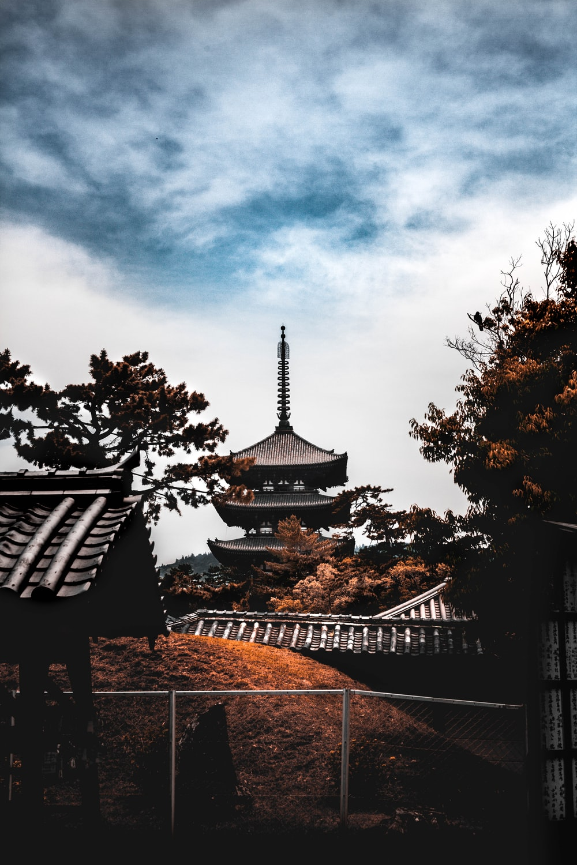 brown pagoda scenery
