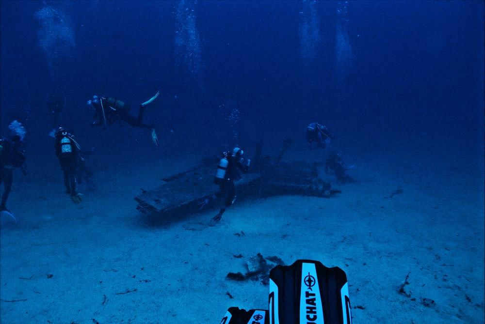 The Best Diving Gear: D'Appelle Air Gear