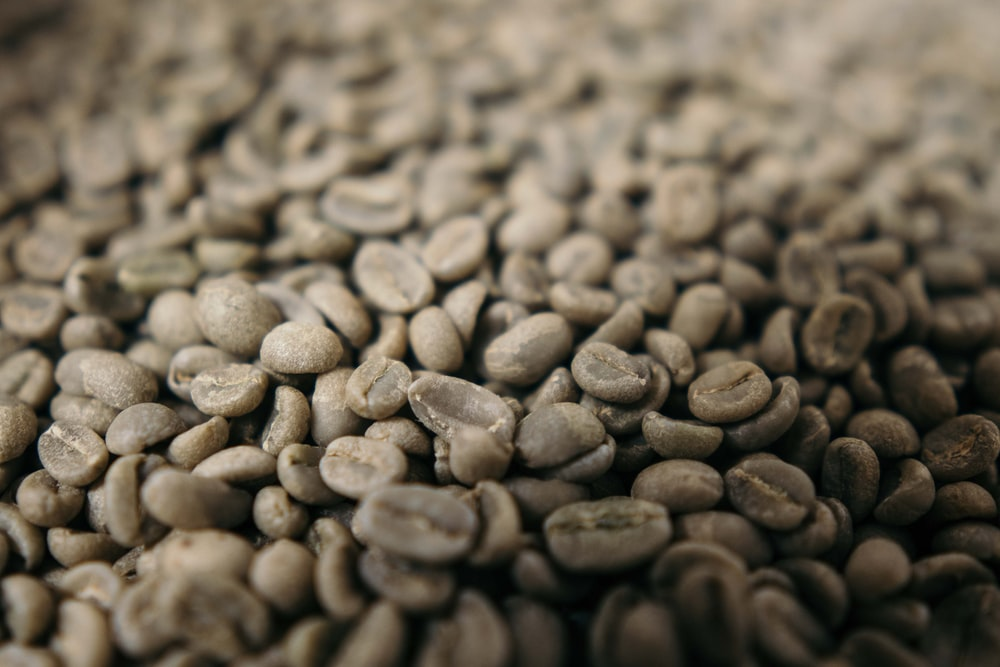 coffee beans close-up photography
