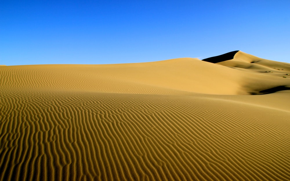 100+ Gobi Desert Pictures [HD] | Download Free Images on