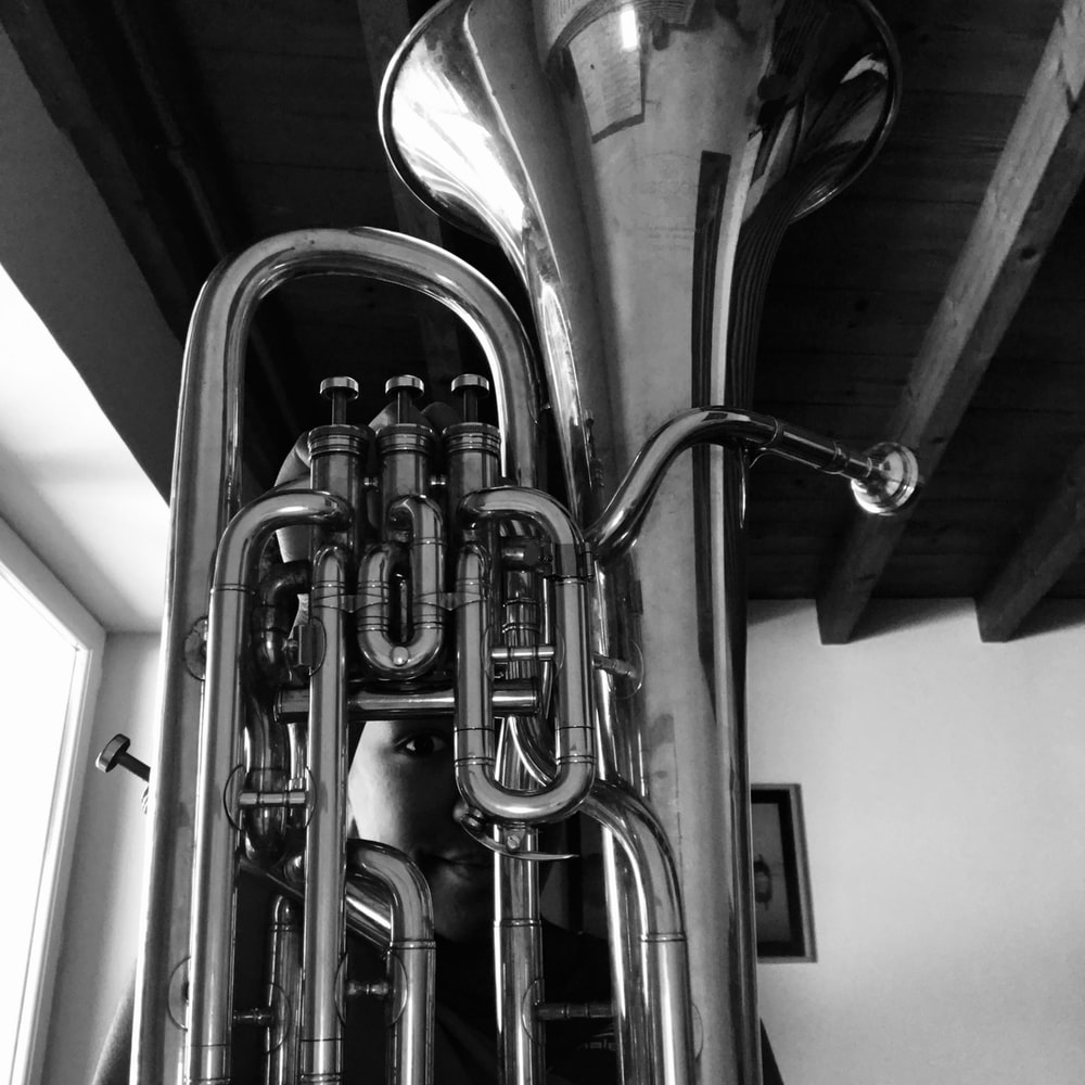 grayscale musical instrument