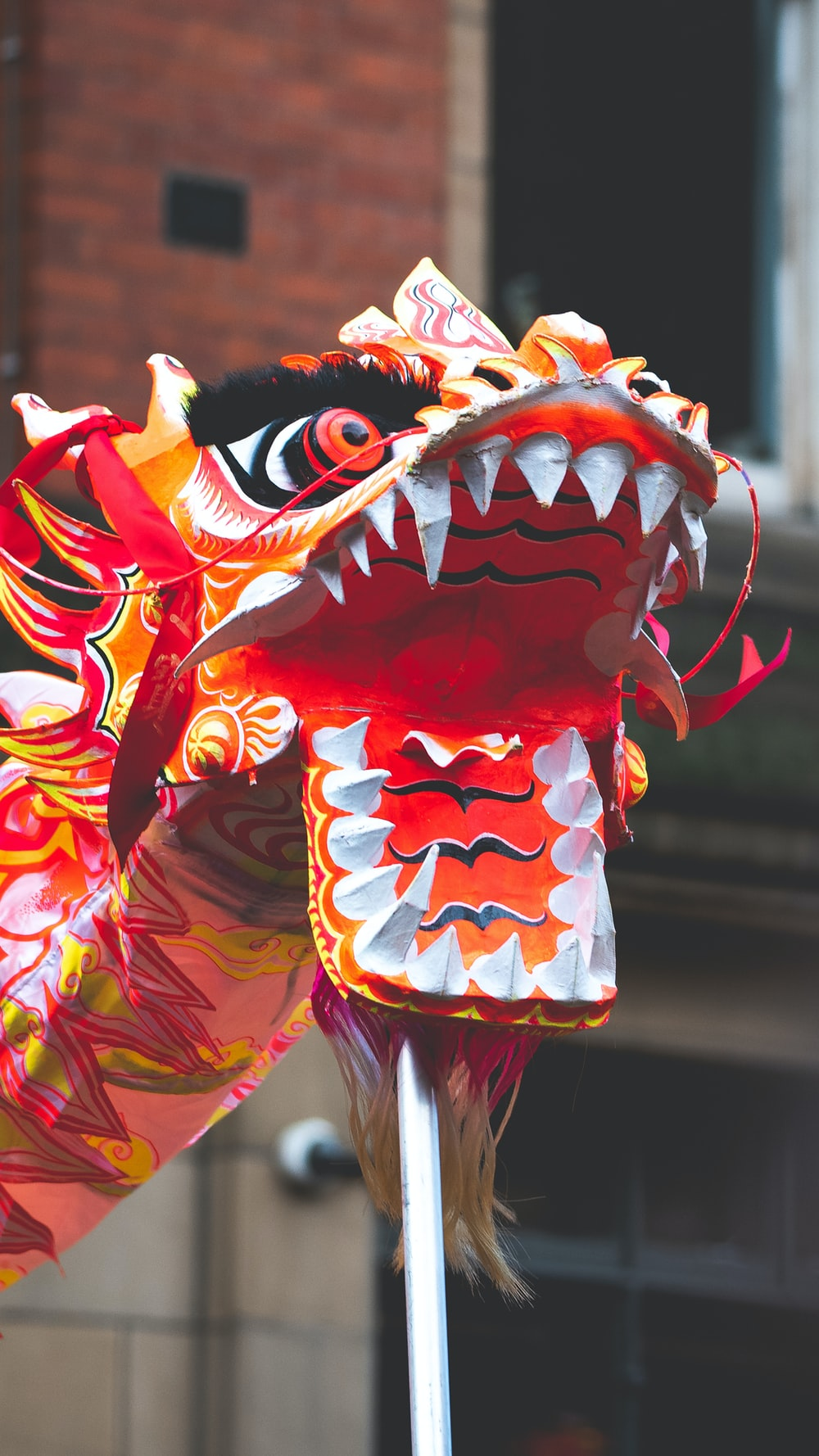 red and white dragon dance