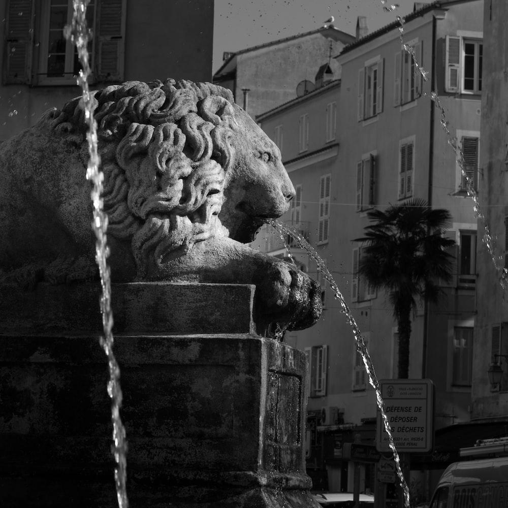 lion statue fountain