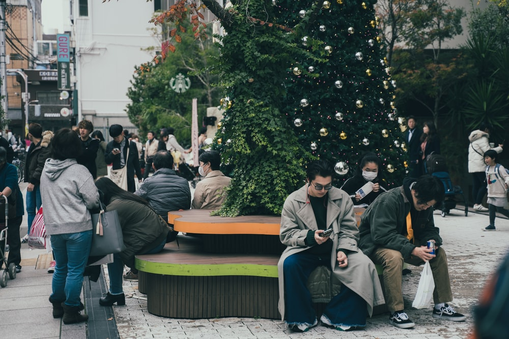 people standing and sitting near green trees during dayitme