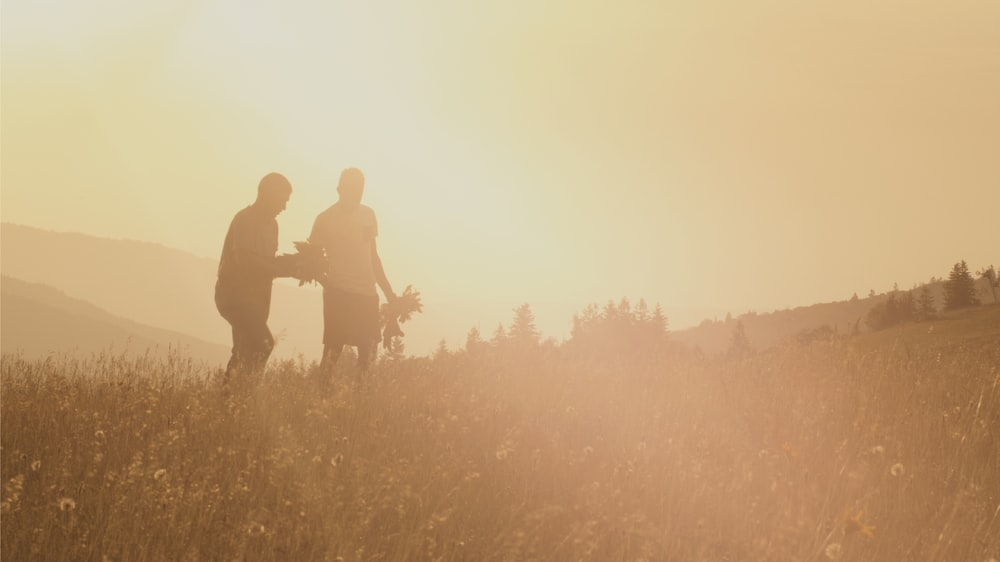 silhouette of two men standing on grass field during daytime