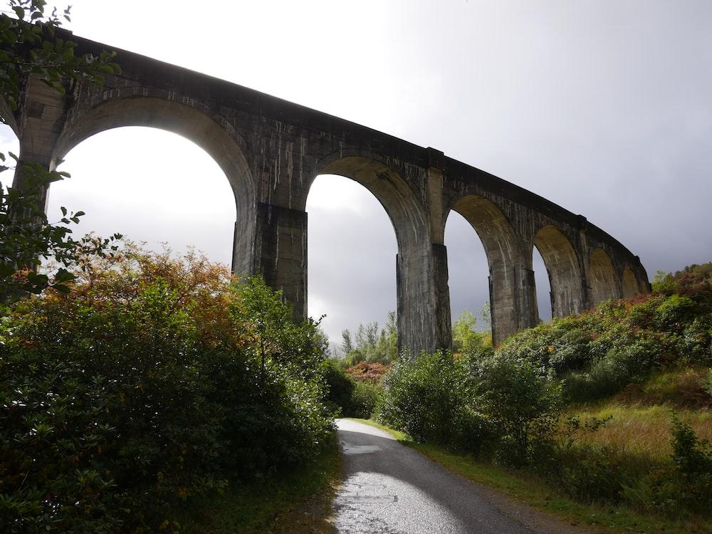 gray concrete bridge under white sky