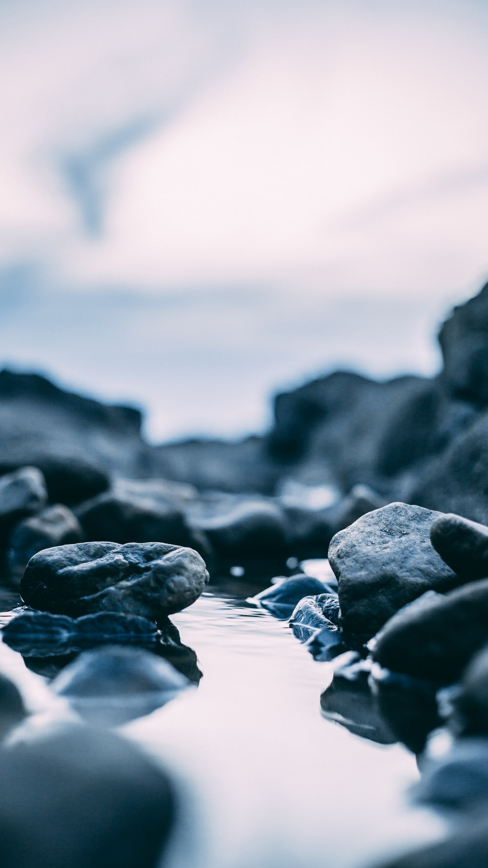 selective focus of rocks with water
