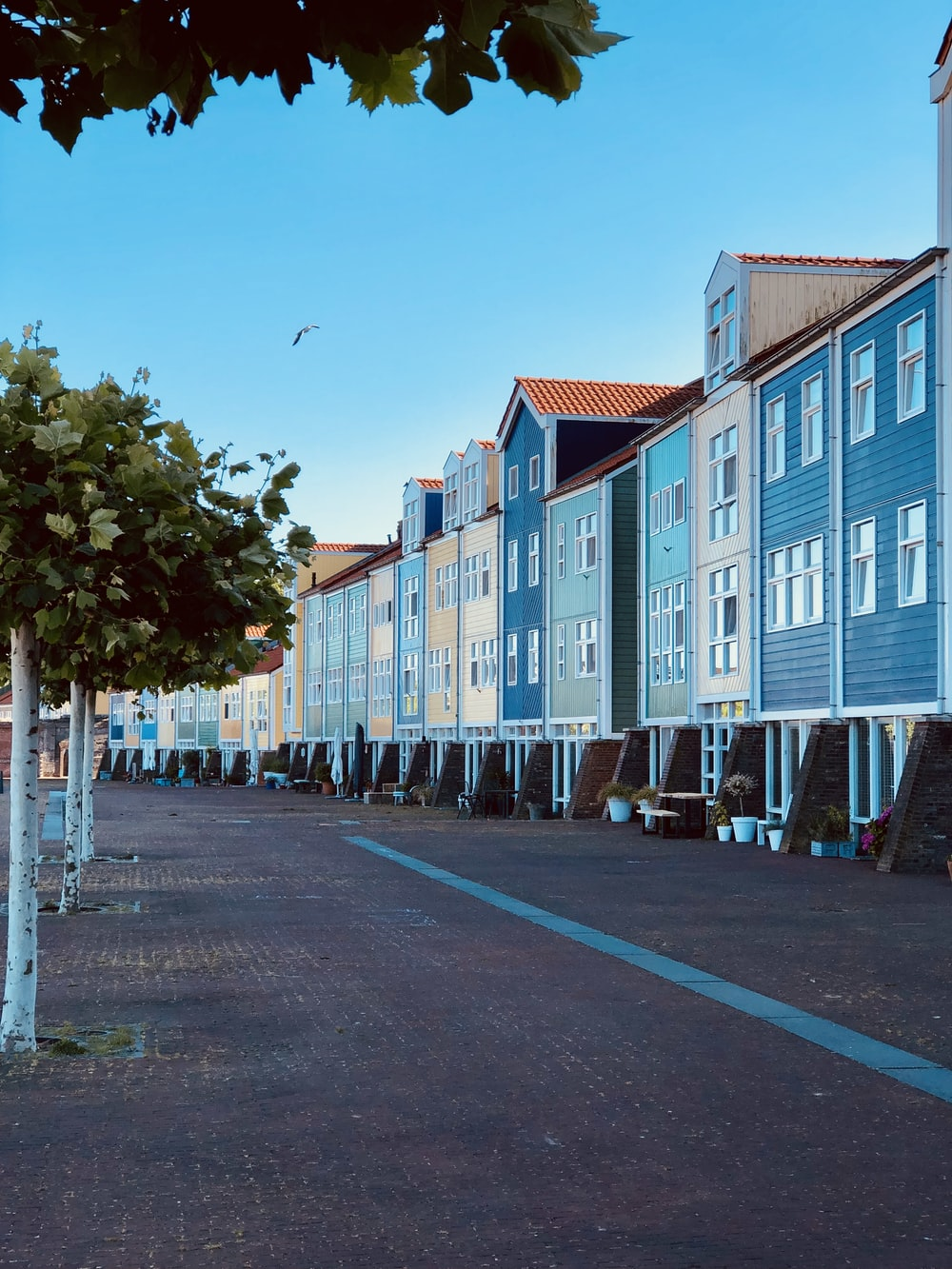 blue wooden houses