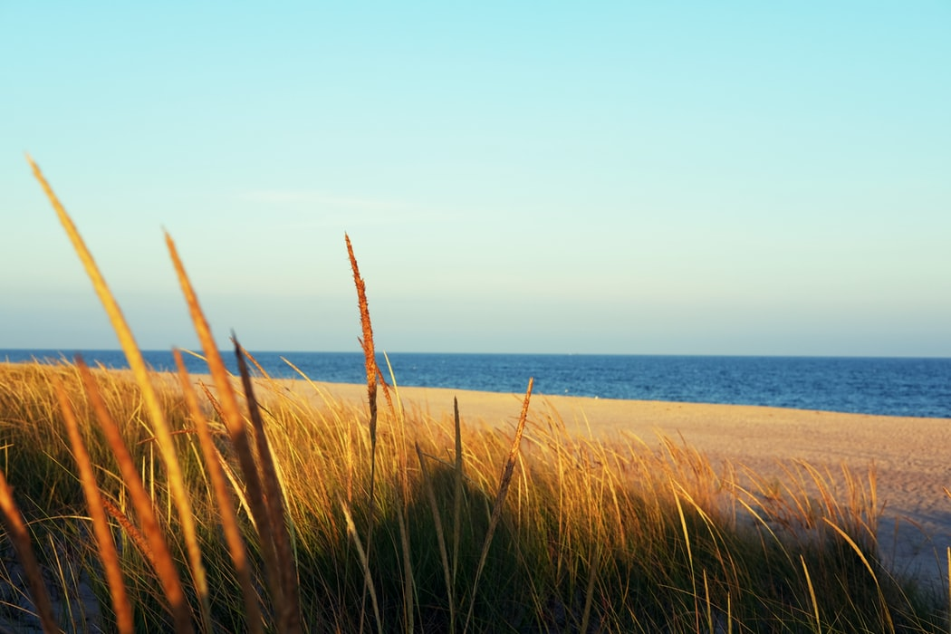 best beaches in new york state
