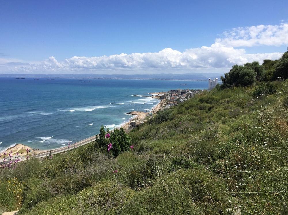 ocean view during daytime