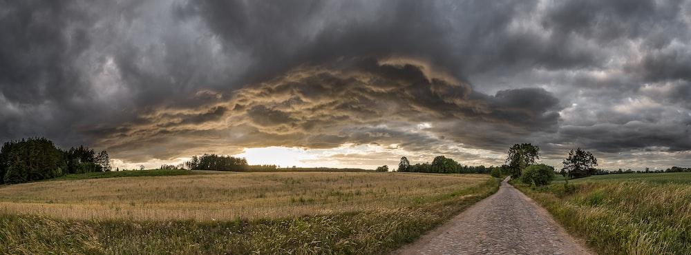 green open field near road under gray skies
