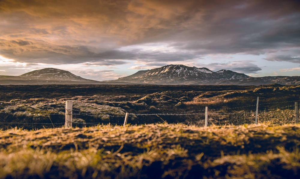 barbwire fences facing mountains