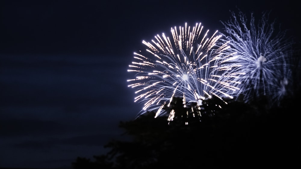 chrysanthemum fireworks during nighttime