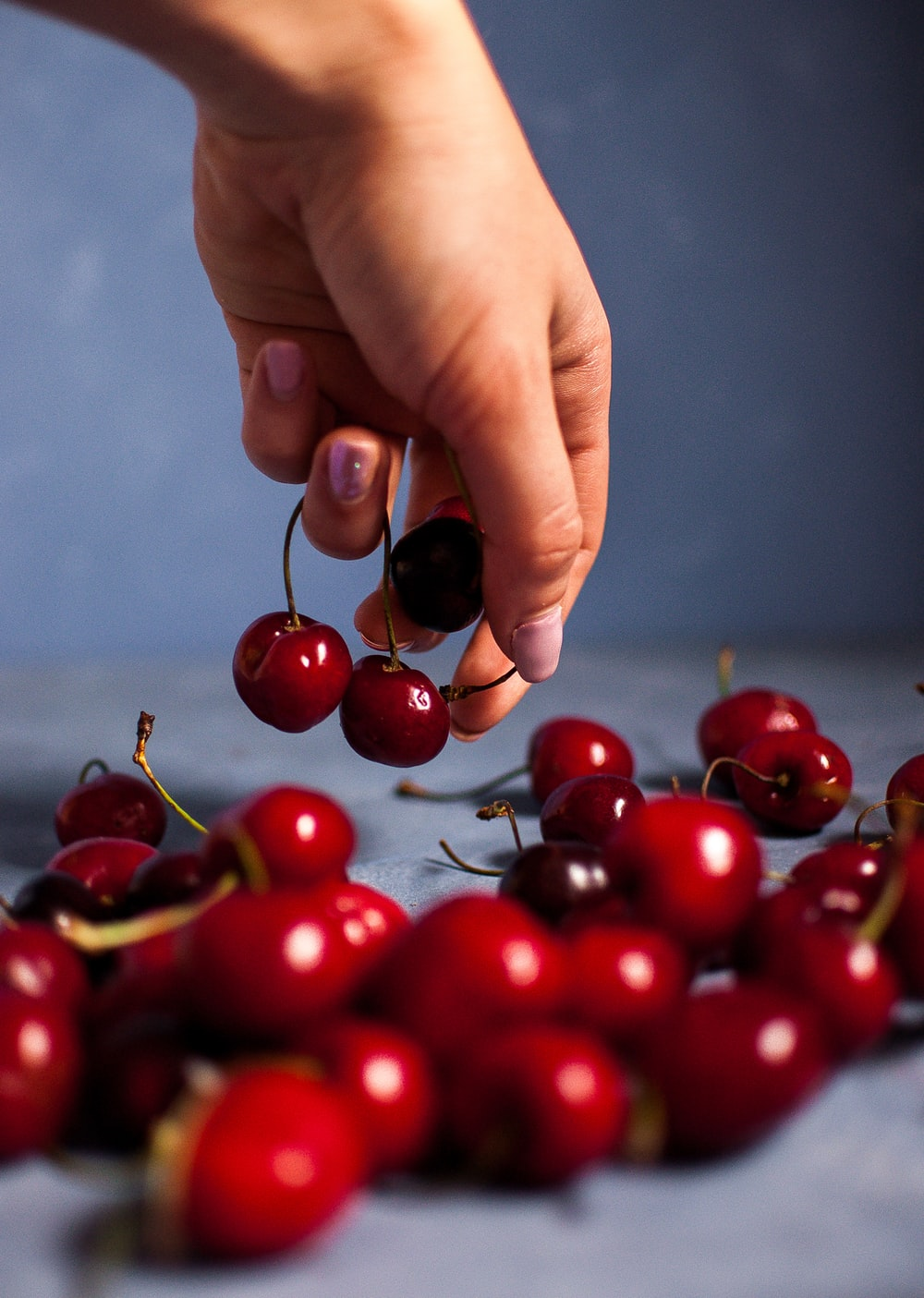 person holding cherries