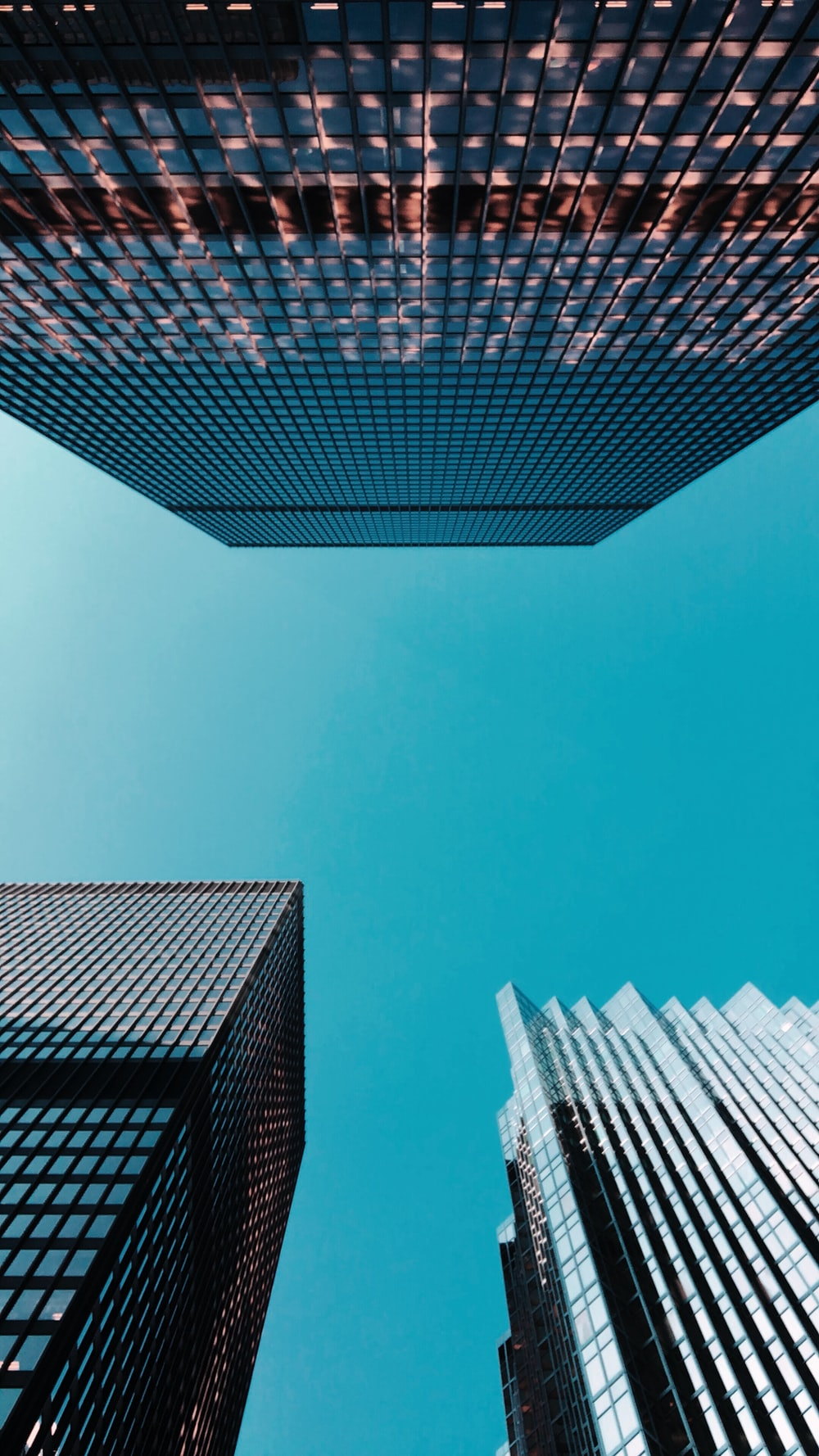 low-angle photography of curtain-wall high-rise buildings