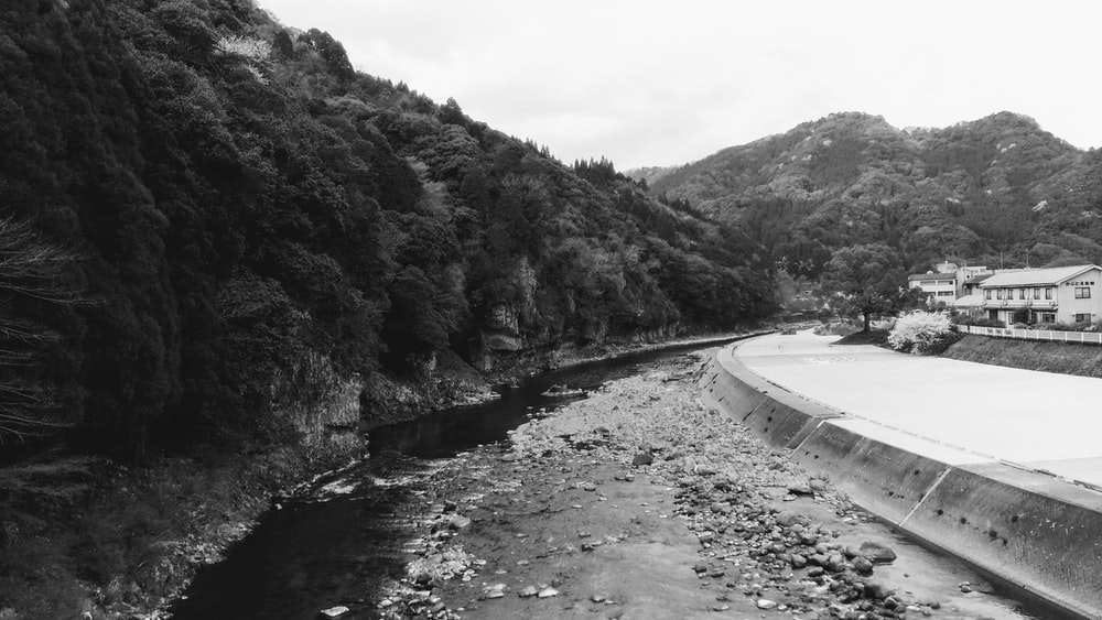 grayscale photography of river