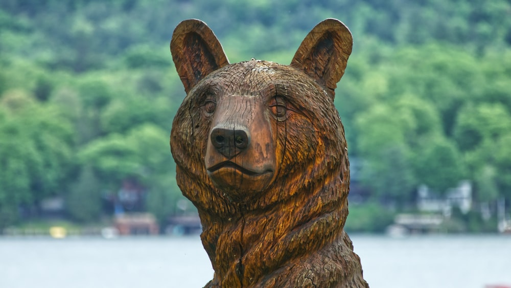 brown bear statue on selective focus photography