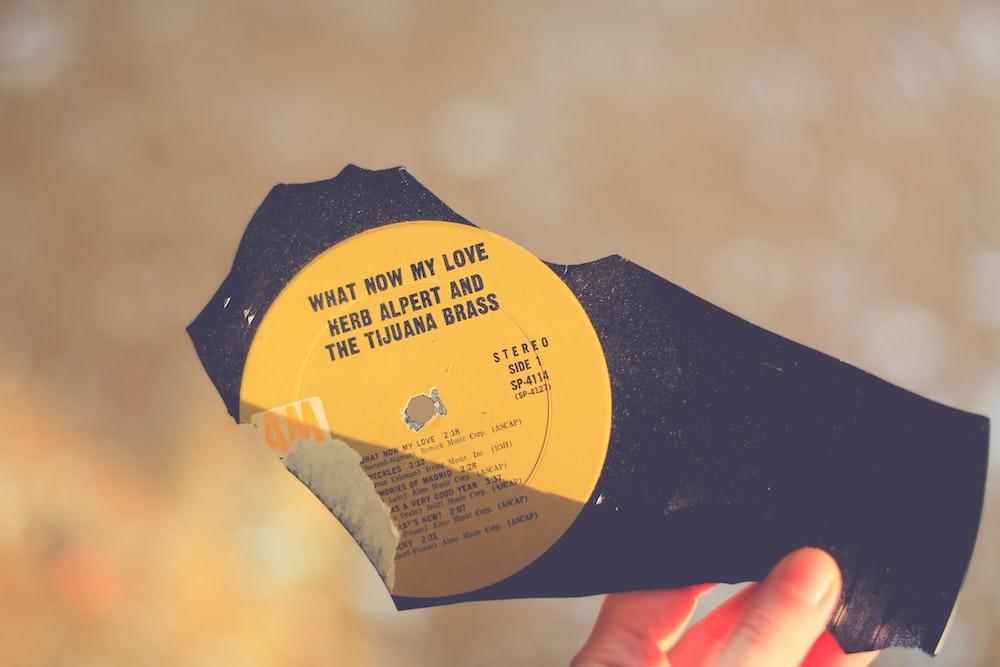 person holding black vinyl record