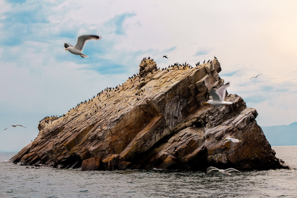 brown rock formation on ocean