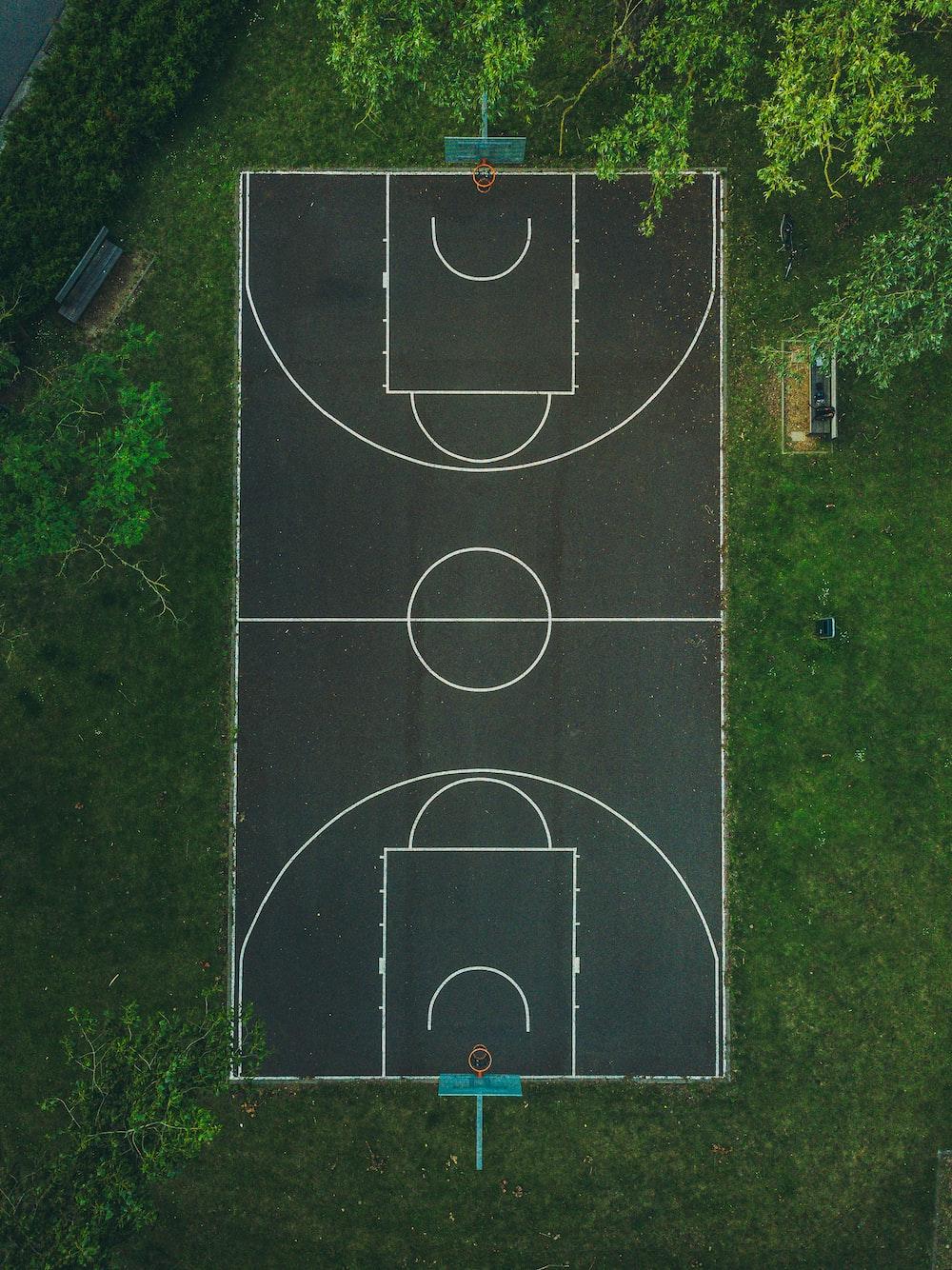 basketball court between trees