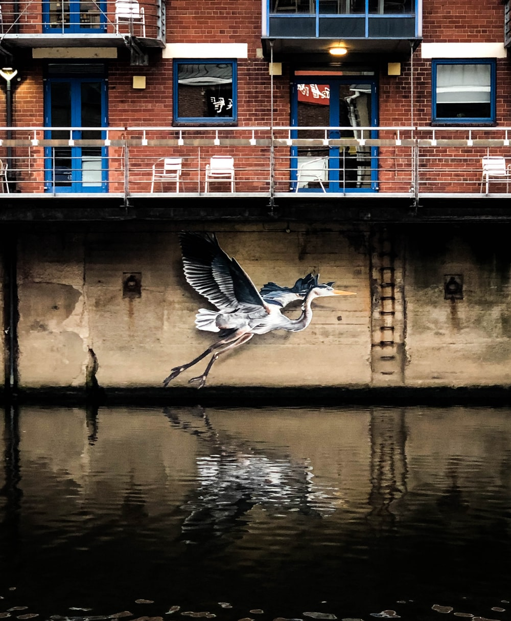 pelican wall painting near body of water