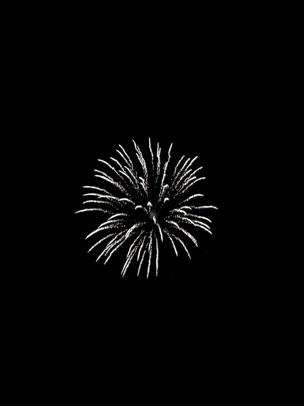 white firework display