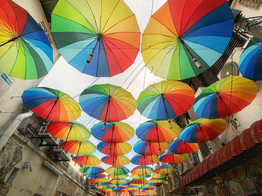 multicolored umbrella lot