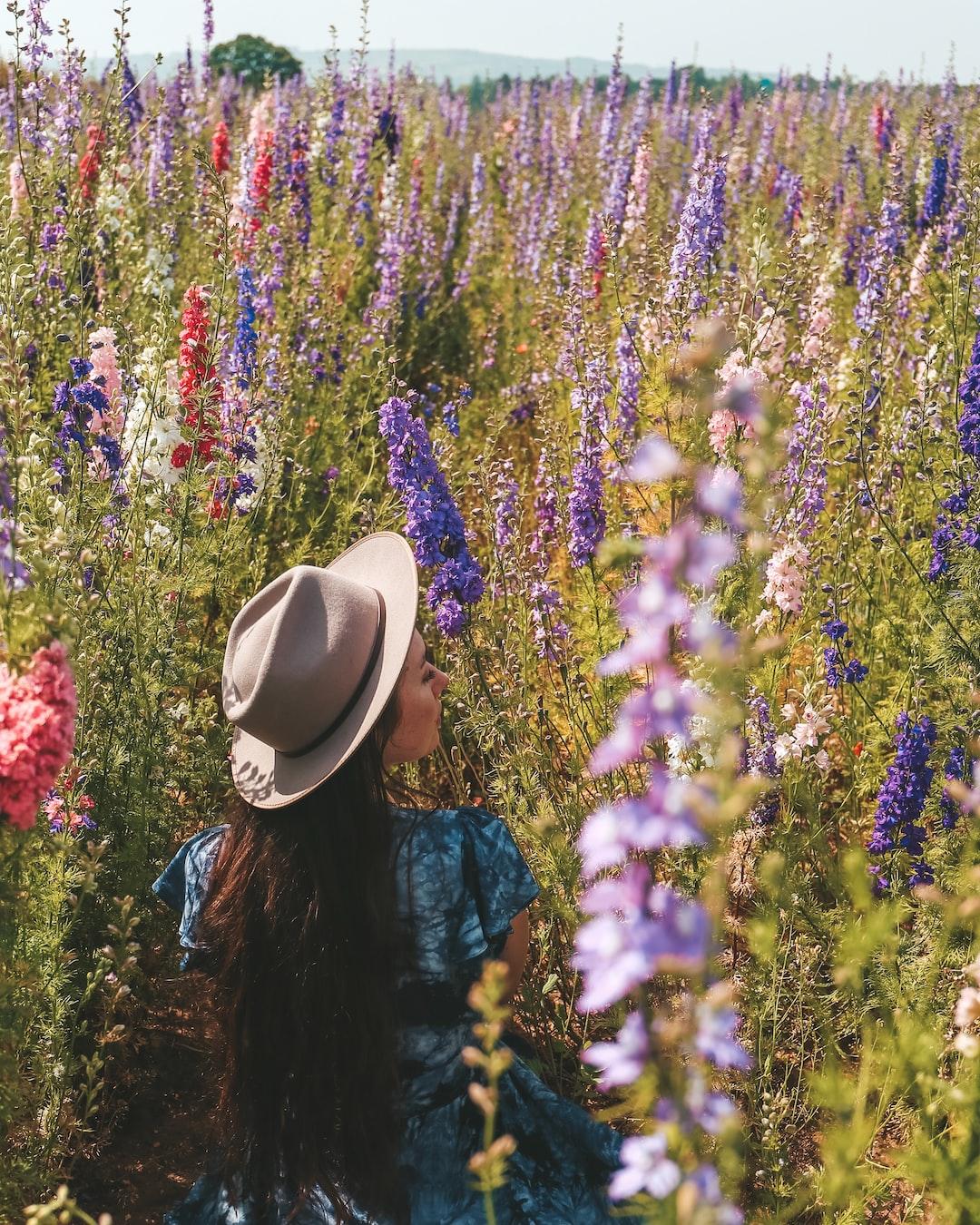 Wildflower Wanderlust