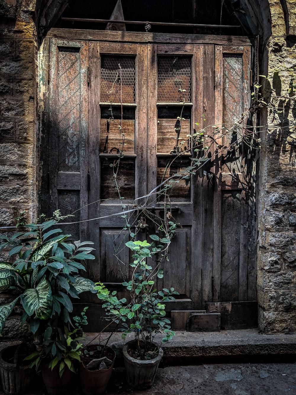 closed brown wooden doors