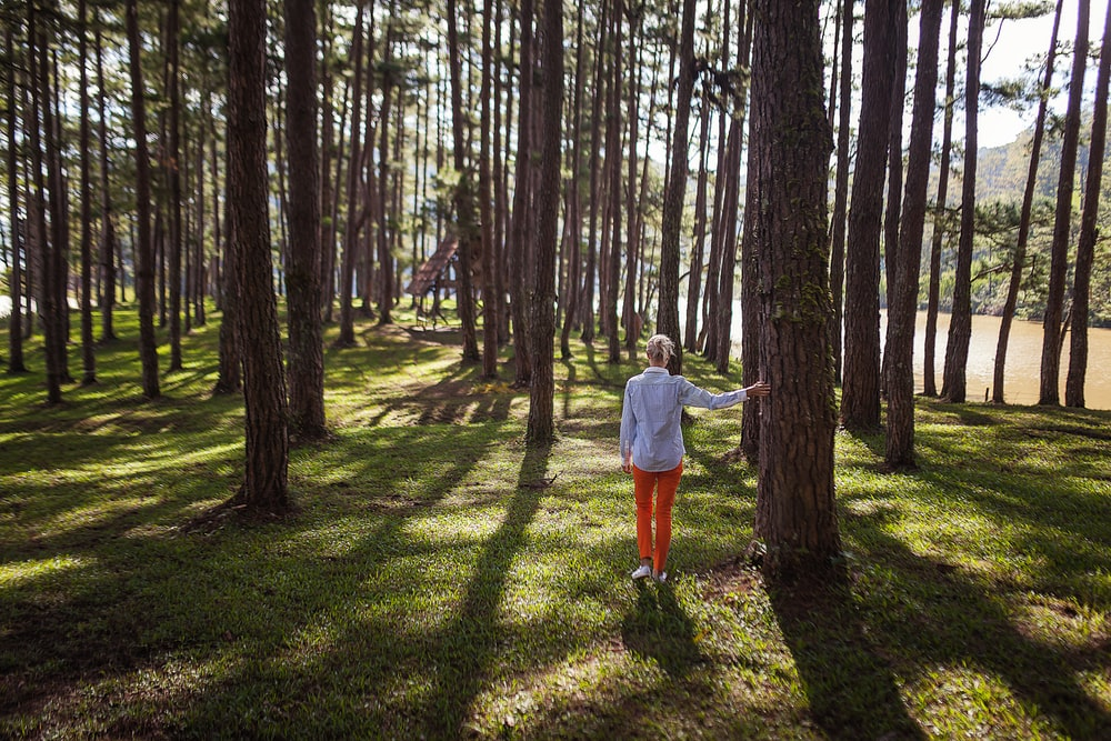 person in orange pants standing under tree during daytime