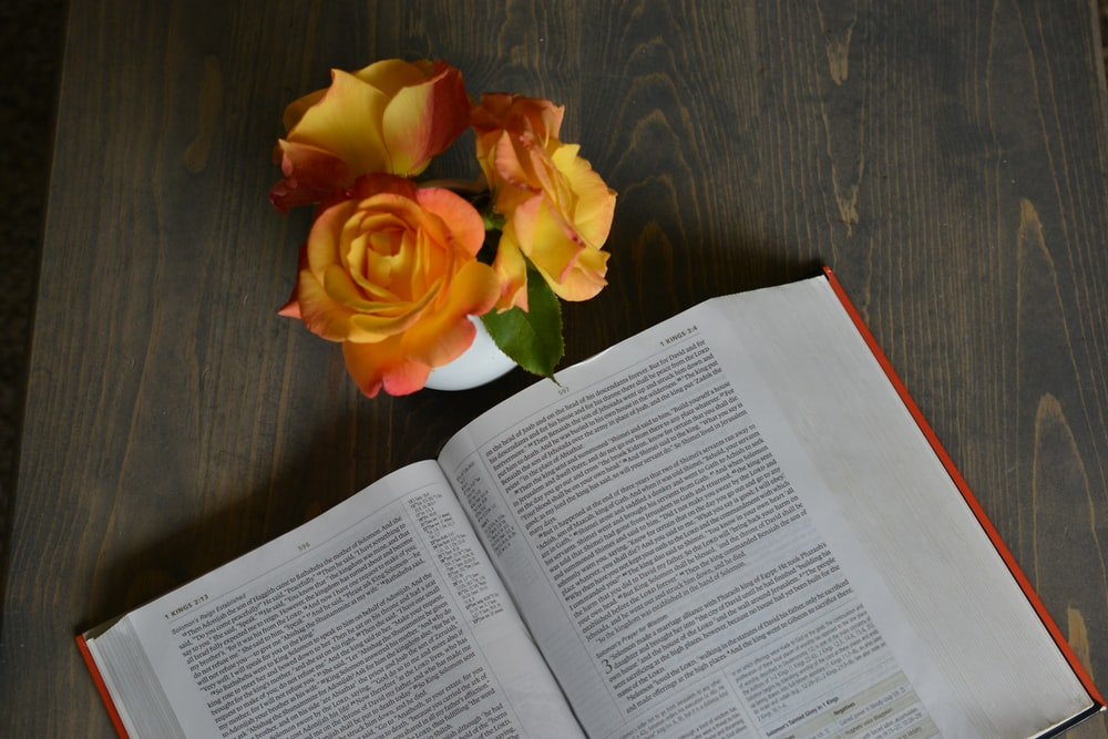 yellow-and-orange rose flowers beside opened book