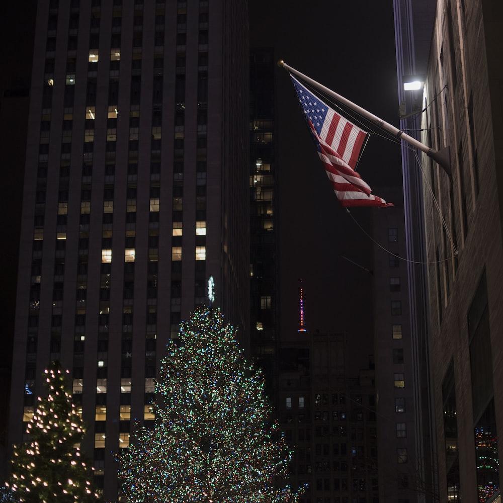 Christmas trees near flag of US
