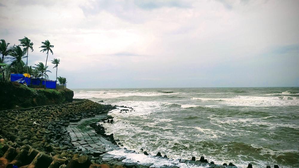 waves splashing on seashore during daytime