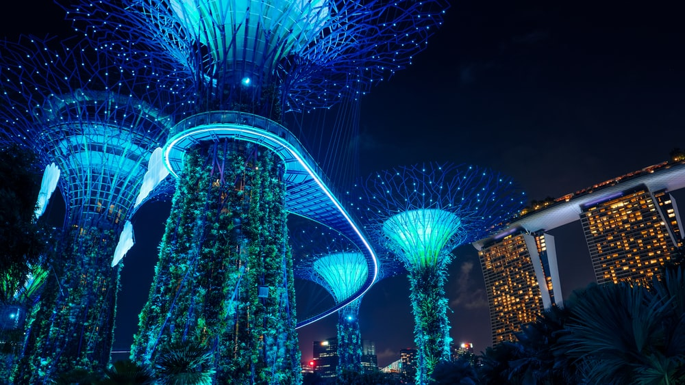 blue lighted Gardens by the Bay during night