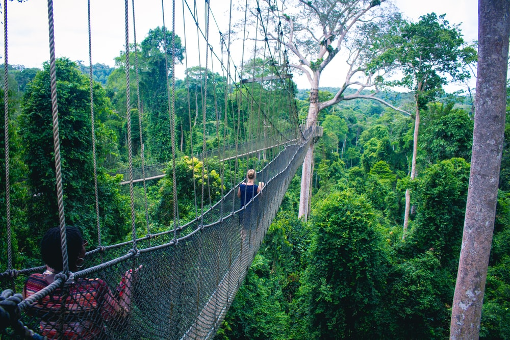 woman walking on hanging bridge