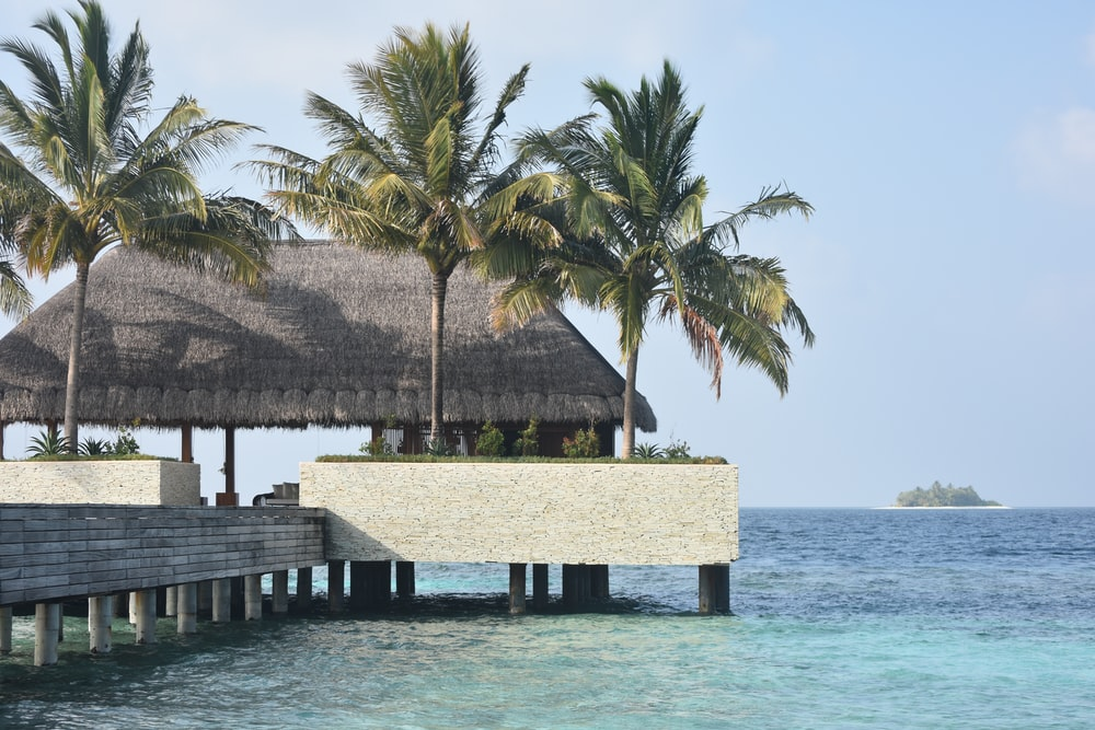 kiosk on dock with coconut trees