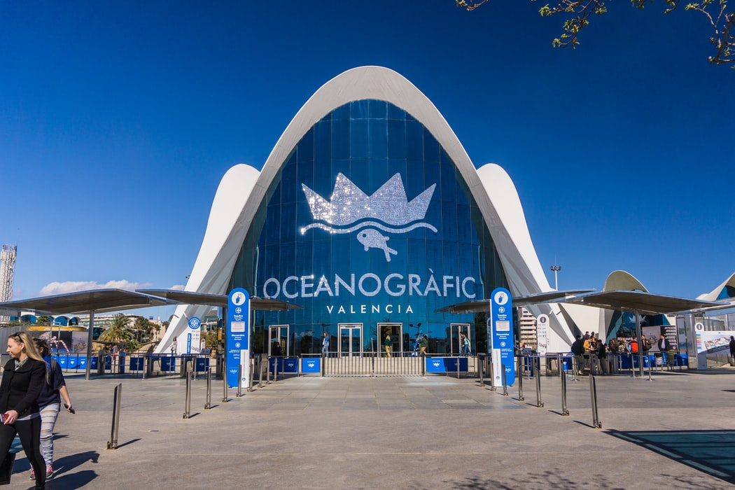 Oceanografic- top things to do with children in Valencia.